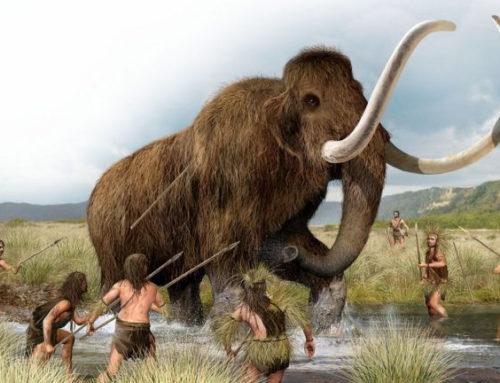 Le mythe du bon sauvage respectueux de la nature